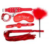 Набор красных БДСМ-аксессуаров из 5 предметов